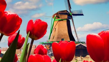Authentic Holland And The Charms Of Belgium (port-to-port Cruise)