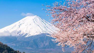 Back Roads of Japan