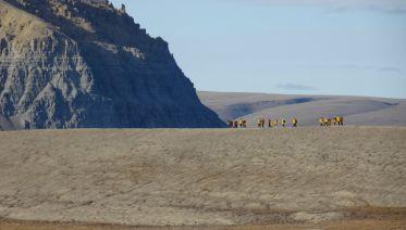Baffin Island & Greenland Explorer