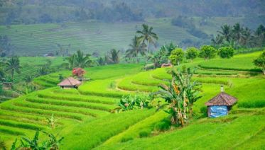 Bali & Gili Highlight, Private Tour