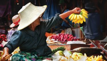 Best of Northern Thailand