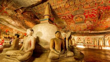 Best of Sri Lanka & Southern India