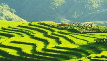 The Best of North Vietnam: 6 Days