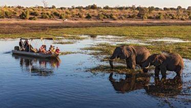 Botswana Delta and Wildlife Explorer
