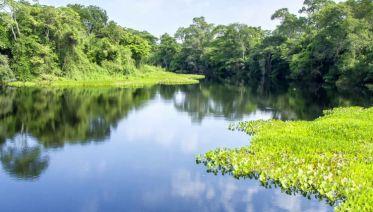 Brazil Pantanal Experience - Independent