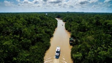 Brazilian Amazon by Boat
