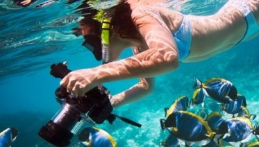 Budget Hurghada Tours - Snorkeling In Mahmya Island