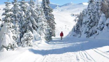 Bursa Day Tour (Snow Hill Tour)