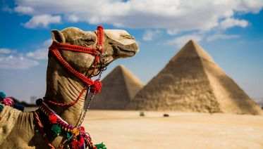 Cairo And Alexandria Tour