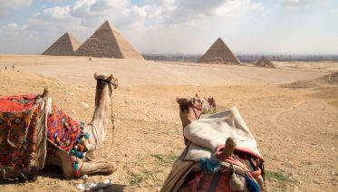 Cairo Day Tour