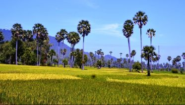 Cambodia´s Countryside