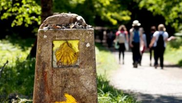 Camino Portugues: Porto to Santiago