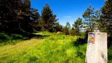 Camino Primitivo Highlights: Oviedo to Lugo