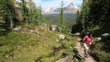 Canadian Rockies Wilderness Walks
