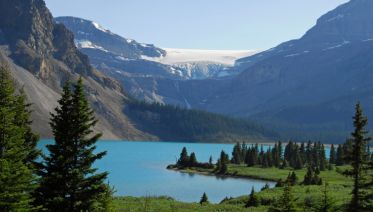 Canadian Wildlife & Vancouver Island