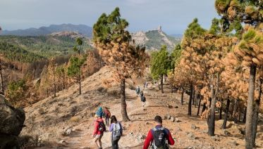 Canary Islands Walking - Gran Canaria