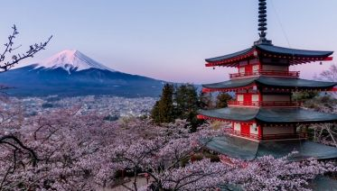 Cherry Blossom Japan 7 Days from Tokyo to Kyoto