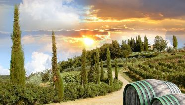 Chianti & Castel Tour from Siena