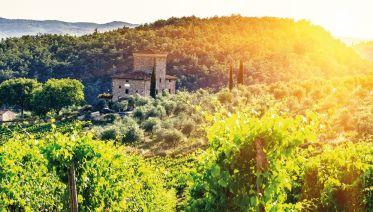 Chianti E Bike Tour From San Gimignano