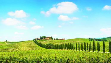 Chianti Experience From Lucca