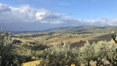 Chianti Wine Tour from Florence