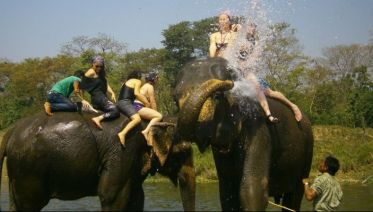 Chitwan Jungle Safari Tour 3 Days / 2 Nights