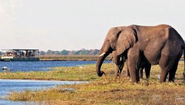 Chobe and Victoria Falls 5 Days