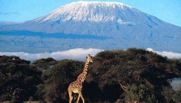 Classic Kilimanjaro Trek