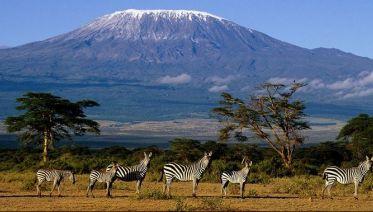Climbing Kilimanjaro 6-Day Machame Route