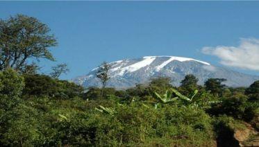 Climbing Kilimanjaro 7-Day Lemosho Route