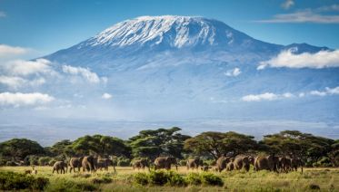 Climbing Kilimanjaro 7-Days Machame Route
