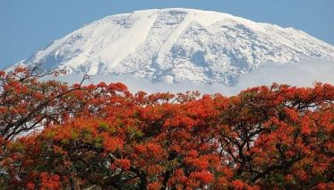 Climbing Kilimanjaro Mountain 6-Day Rongai Route