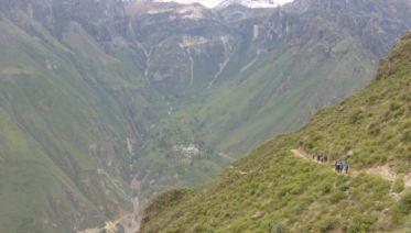 Colca Canyon Trek 2D/1N