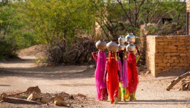 Colours of Rajasthan - Pushkar Festival