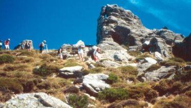 Corsica Tours