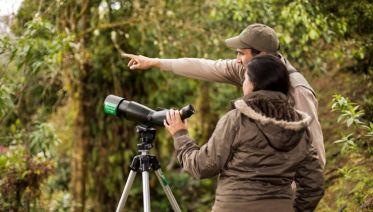 Costa Rica Birdwatching