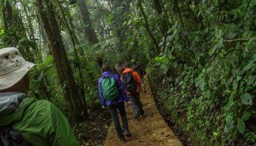 Costa Rica Highlights Independent Adventure