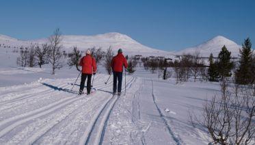 Cross-Country Skiing in Venabu