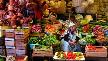 Crossing the Andes: Authentic Bolivian Experience