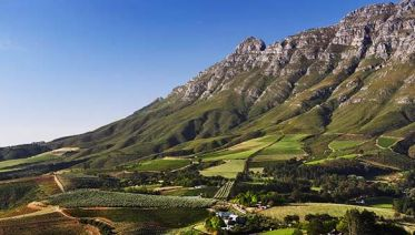 Custom Half Day Wine Tour from Franschhoek
