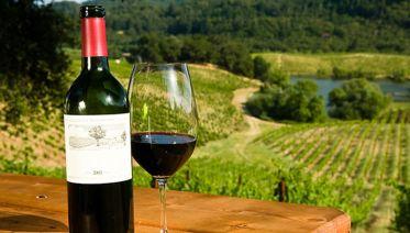 Custom Private Bay Area Tour -Visit Wineries & Muir Woods