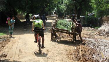 Cycle Burma