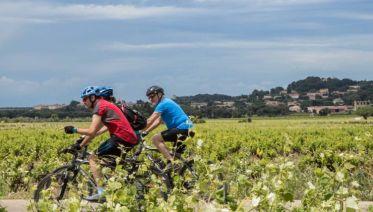 Cycle Provence & Tuscany