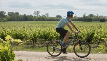 Cycle South Australia's Wine Regions