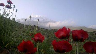 Damavand Expedition Iran