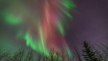 Denali Aurora Quest