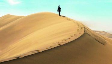 Desert Tracker (19 Day) 2017-18