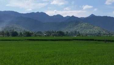 Discover Lombok
