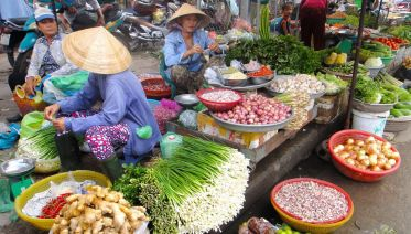 Discover The Life Of Local Vietnamese Off The Beaten Path