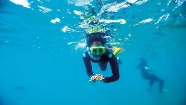 Dive to Adventure